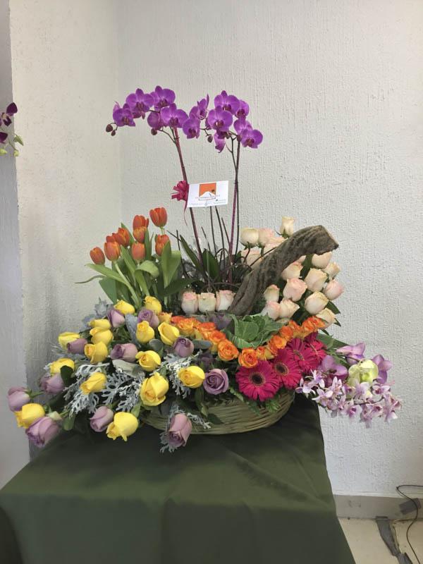 Especial con tulipanes y orquídea