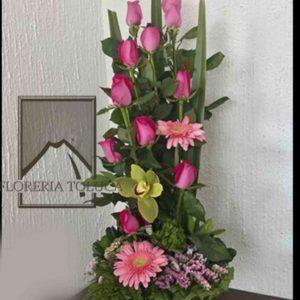 12 rosas y orquídea cimbidium